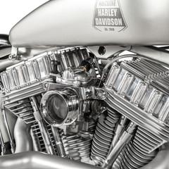 Foto 15 de 24 de la galería hd-iron-riot en Motorpasion Moto