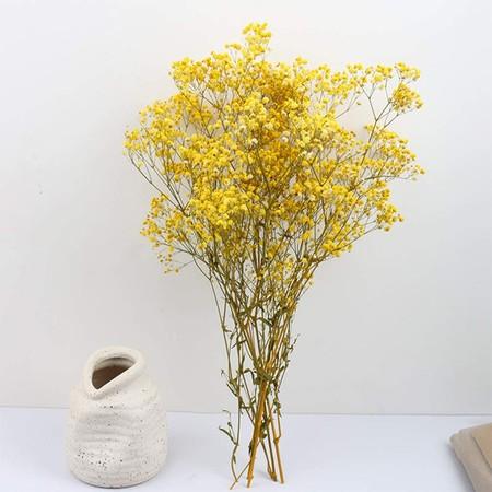 Flores secas amarillas