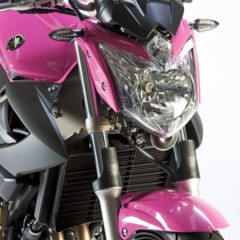 Foto 10 de 51 de la galería yamaha-xj6-rosa-italia en Motorpasion Moto