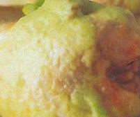 Codornices con salsa de ajo
