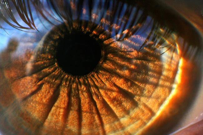 El ojo de catwomancristi