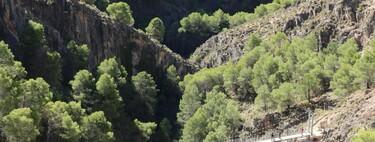 Canillas de Aceituno inaugura El Saltillo, uno de los puentes colgantes más grandes de España con 50 metros de largo y no apto para vertiginosos
