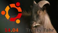Ubuntu 14.04 LTS ya tiene nombre: Trusty Tahr