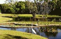 Parques y Museos de Caracas