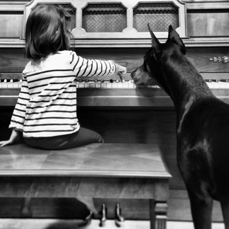 Cutie And The Beast Dog Girl Seana Doberman 76