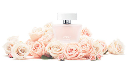 tous rosa perfume review