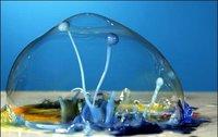 Esculturas líquidas realizadas con gotas paralizadas en el tiempo