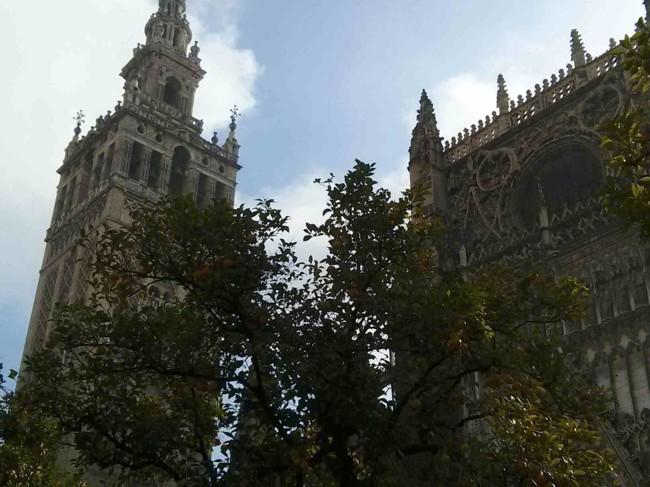 ¿Culto o turismo? El arzobispo de Sevilla pide decoro para visitar la Catedral
