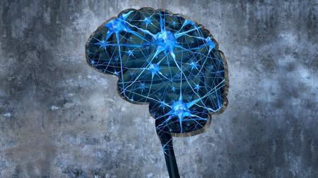 El 56% de la información se olvida en una hora si no hay una conexión con con el conocimiento previo