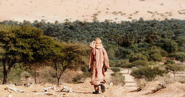 La muralla de árboles africana para detener al Sáhara es una mala idea. Es hora de replantearla