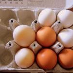 Conoce las funciones de la vitamina colina y como obtenerla en la dieta