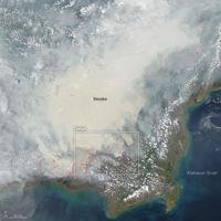 Indonesia lleva 120.000 incendios en 2015. Y cada año pasa algo parecido