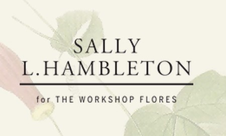 sally-l-hambleton.jpg