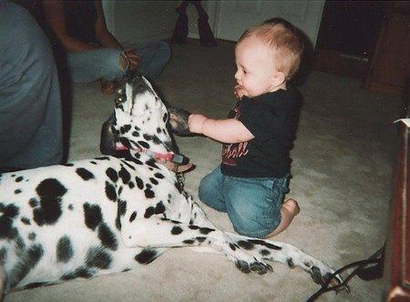 Gatos, perros y eccemas en la infancia