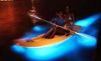 Una bahía de aguas luminiscentes en Puerto Rico