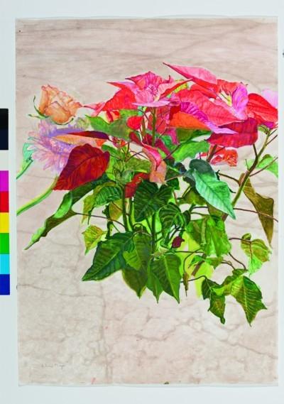Obra de Antonio Maya en el espacio de las artes de ECI