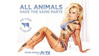 Pamela Anderson, una vez más, censurada