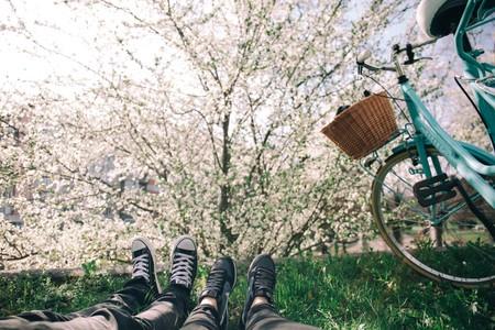 Astenia Primaveral 1