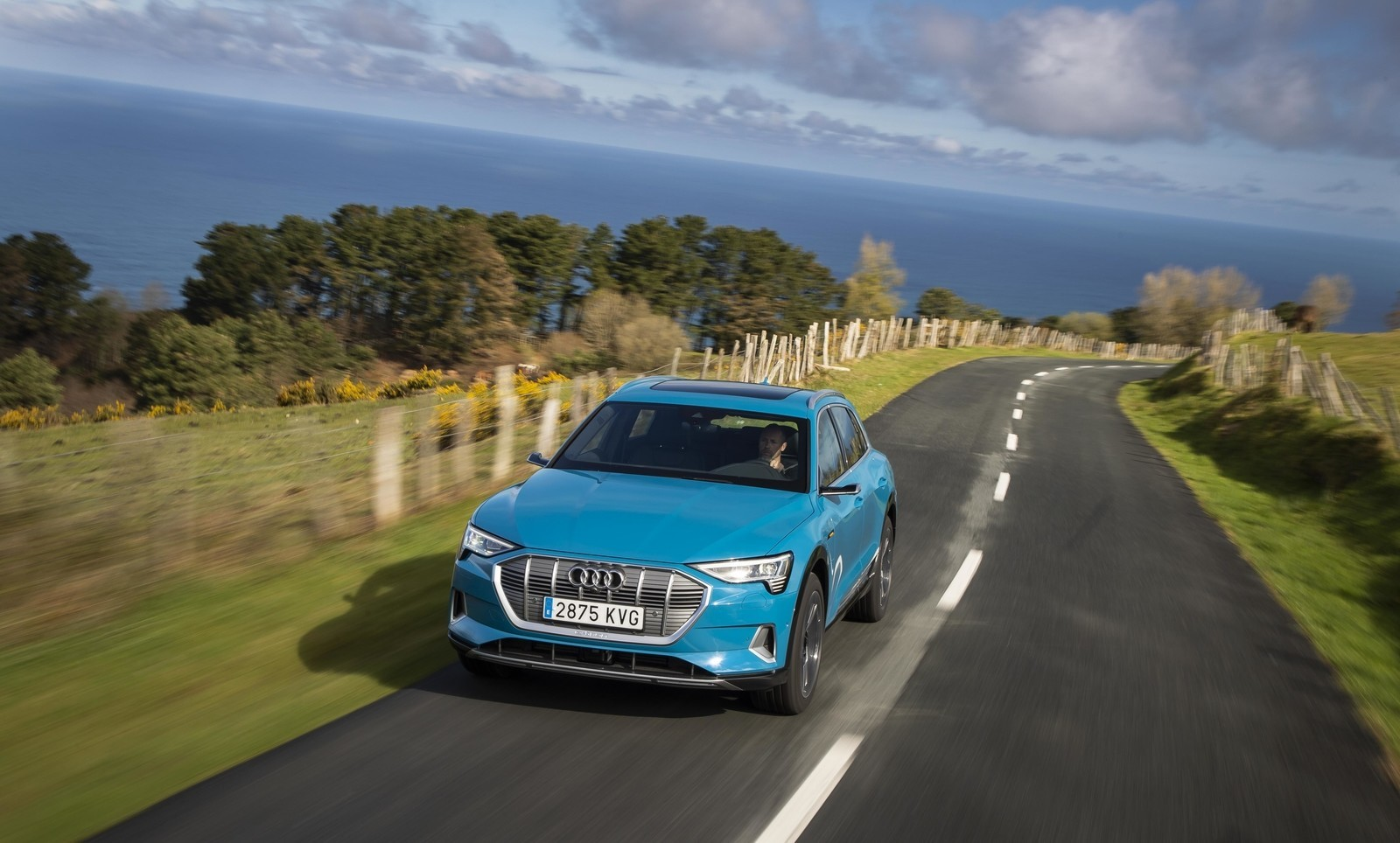 Foto de Audi e-tron (24/111)