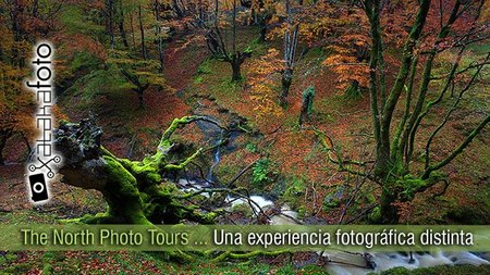 The North Photo Tours: Una experiencia fotográfica distinta