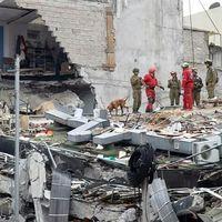 Cuando un mensaje de WhatsApp se vuelve decisivo para salvar la vida, una historia del sismo en Ciudad de México