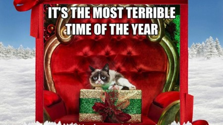Grumpy Cat Day 5