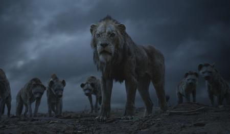El Rey Leon2