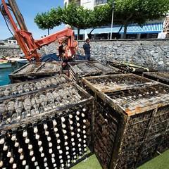 Foto 5 de 7 de la galería bodega-submarina-en-plentzia-bilbao en Directo al Paladar