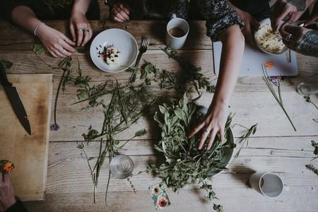 Los adaptógenos o plantas contra el estrés: la ciencia nos dice si realmente funcionan