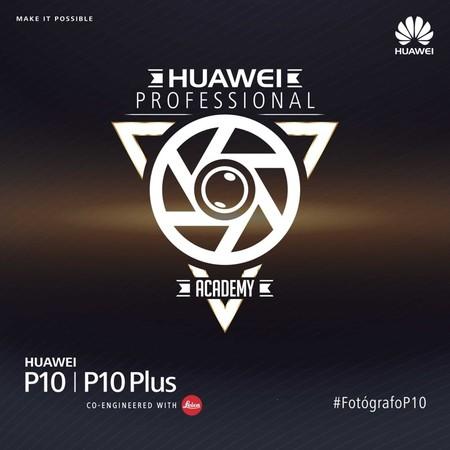 Huawei Professional Academy