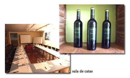 vinos chinchilla, catas