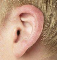 Esas antenas sobrenaturales que son las orejas