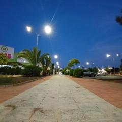 Foto 37 de 42 de la galería mas-fotografias-con-el-sony-xperia-l4 en Xataka Android