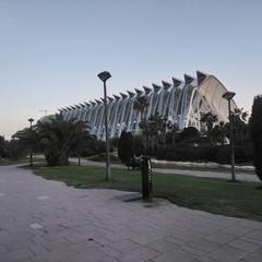 Foto 43 de 50 de la galería fotos-tomadas-con-el-sony-xperia-xa2-ultra en Xataka Android