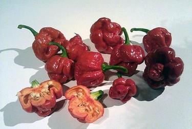 Los jueves toca cocina mexicana con Directo al Paladar México (XXXVII)