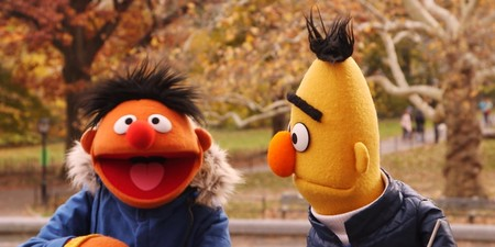 O Bert Ernie Outside In The Fall Facebook