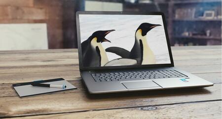Cada vez hay más fabricantes grandes que venden portátiles con Linux preinstalado: estas son las principales propuestas