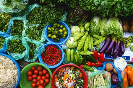 Alimentacion Vegetal