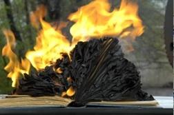 Salva un libro del fuego
