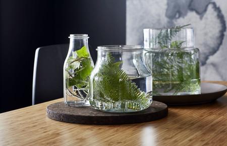 Ikea Plantas Ph135100