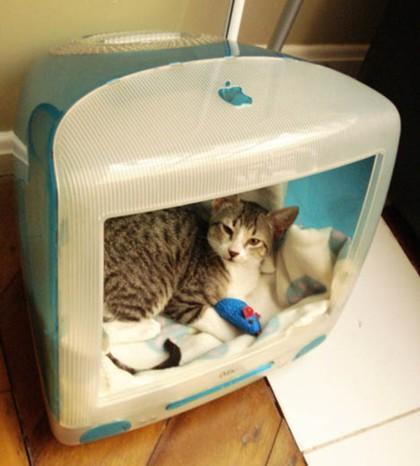 Recicladecoración. Un refugio para gatos en un viejo Mac