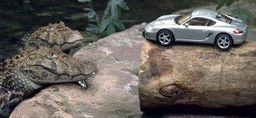 Porsche Cayman, desde hoy a la venta