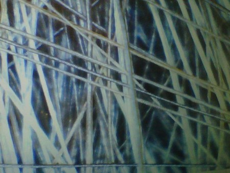 evolicion-capilometris-digital.jp