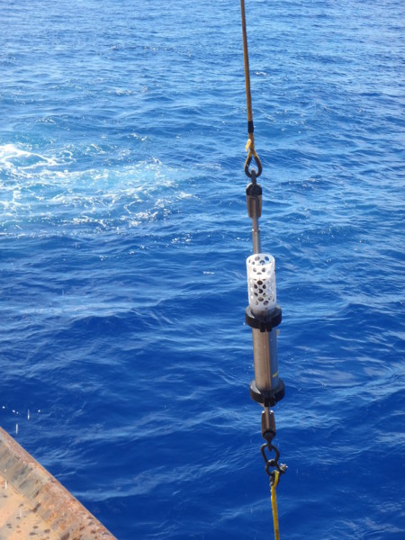 Cd Hydrophone Close
