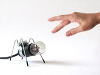 Sé transgresor y pon una lámpara insecto en tu vida