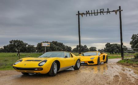 ¡Imágenes históricas! Este es el Lamborghini Miura en la ganadería de Miura