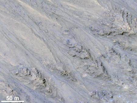 Arena Marte