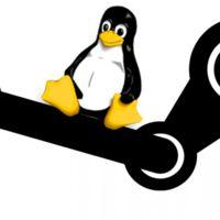 Steam sigue creciendo a pasos agigantados en Linux: estos son sus retos de cara al futuro