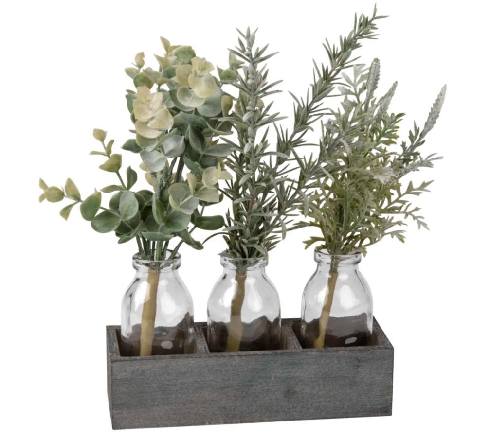 3 plantas con botellas de cristal y soporte