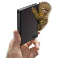 LaCie Rikiki, el disco duro del mono